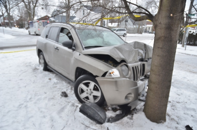 The Jeep Compass is seen in contact with the tree.
